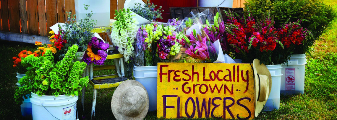 Beehaven sign 1 - Why Buy Local Flowers